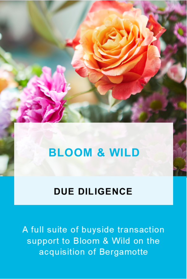 Bloom-and-Wild-2